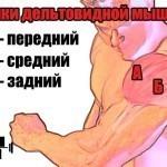 Как накачать плечи?