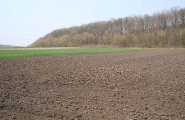 купить земельный участок в Луганске