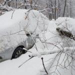 Жительница Киева «потеряла» автомобиль в снегу