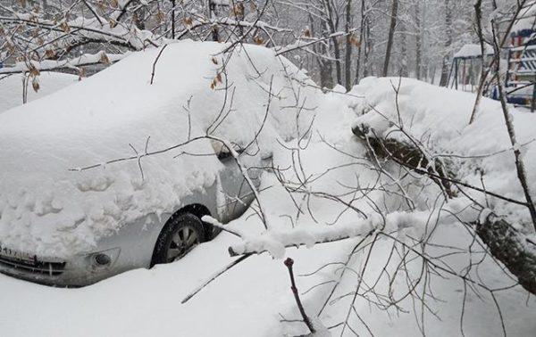 """""""потеряла"""" автомобиль в снегу"""