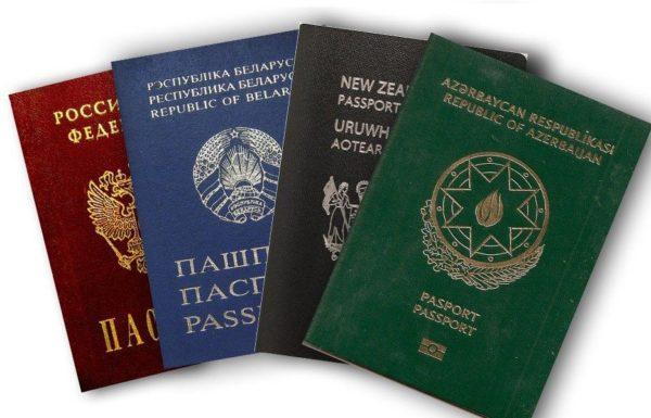 гражданство в разных странах мира